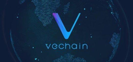 бесплатная раздача криптовалюты VeChain