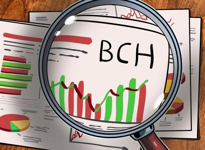Прогноз курса Bitcoin Cash (BCH) на 2019 год
